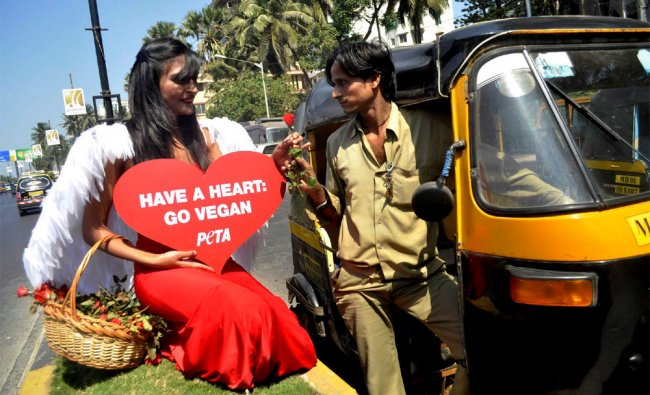 A PETA member offering a rose to an auto-rickshaw driver