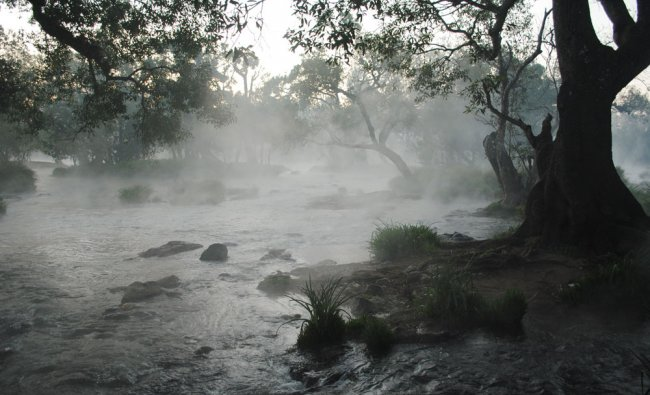 Sunrise on the River Cauvery at Dubare
