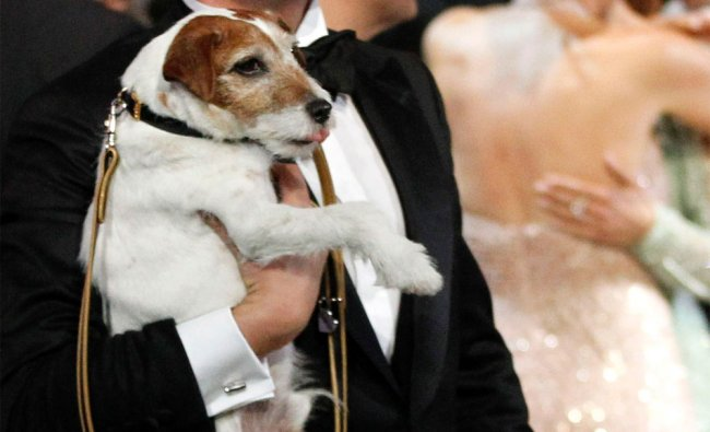 Jean Dujardin holds Uggie after accepting the Oscar