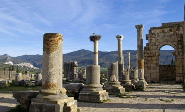 Pillars near the center of Volubilis, Moroccos premier Roman ruins near Meknes, Morocco