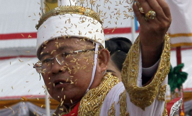 Supachai Banpapthong throws rice seeds to the field during the Royal Ploughing ceremony in Bangkok