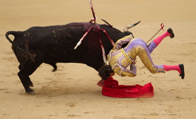 French bullfighter Sebastian Castella is gored during a bullfight of the San Isidro\'s fair in Madrid