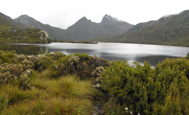 Craddle Lake,Tasmania