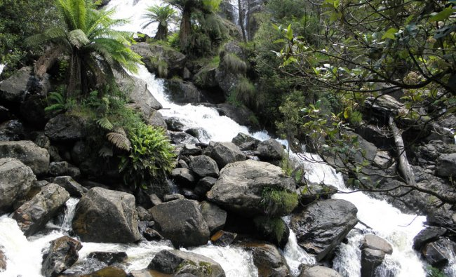 St Columbia Water Falls in Tasmania