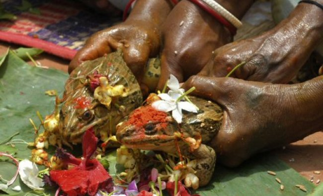 Indian villagers perform rituals during a frog marriage at Akail Pur village in Gazole