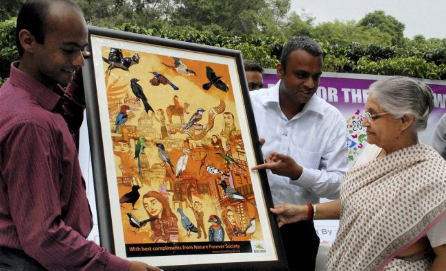 Delhi Chief Minister Sheila Dikshit looks at a painting at the launch of rise for Sparrow campaign