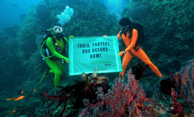 Greenpeace activists unfurl a banner reading \'India, Protect our Oceans now\'
