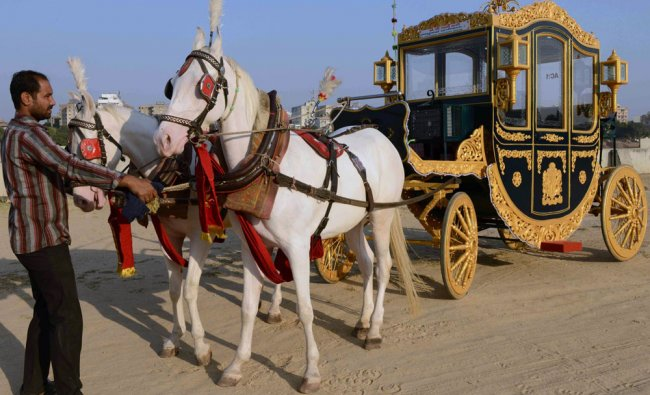 Sameer Bhai Baggiwala handles horses pulling his new air-conditioned buggy in Ahmedabad