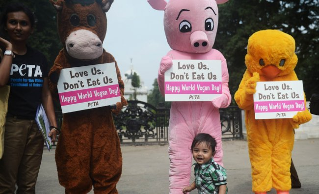 A young boy walks in front of PETA activists
