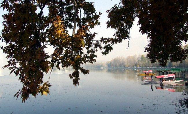 Tourists enjoys shikara ride at the Dal lake,in Srinagar on Saturday.
