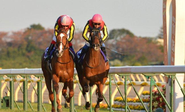 Japanese jockey Yasunari Iwata on Gentildonna (R) races against Orfevre (L) ridden by Kenichi Ikezoe