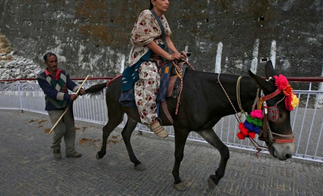 A pilgrim rides a mule on her way to Vaishno Devi