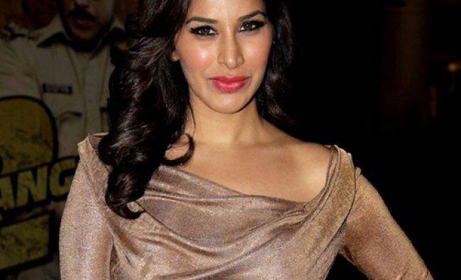 Actress Sophia Choudhry attends the premier of the Hindi film Dabangg2 in Mumbai on December...