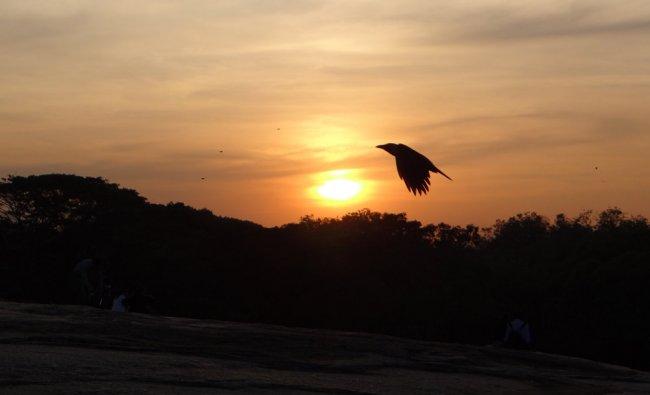 Photo by Ashutosh Nagaraj