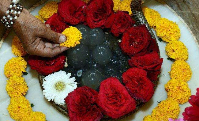 Hindu priest, Kamleshbhai Raval decorates a Shivaling with flowers as part of the Maha Shivaratri ..