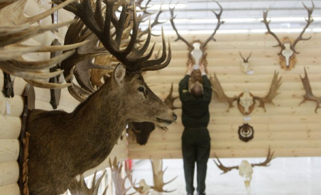 An employee works during the final preparations for the international exhibition \'Hunting...