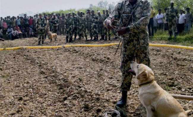 BSF personnel search for handmade bombs at Teor near Balurghat in South Dinajpur district...