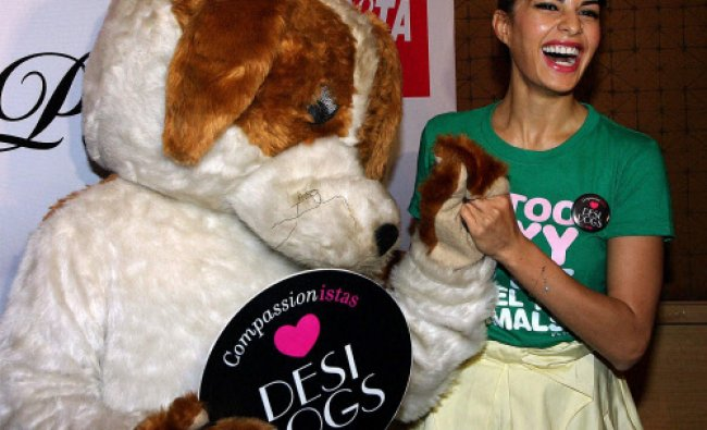 bollywood actress and model Jacqueline Fernandez unveils the PETA campaign for adoption of dogs...