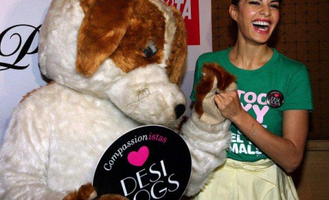 Actress and model Jacqueline Fernandez unveils the PETA newest campaign for adoption...