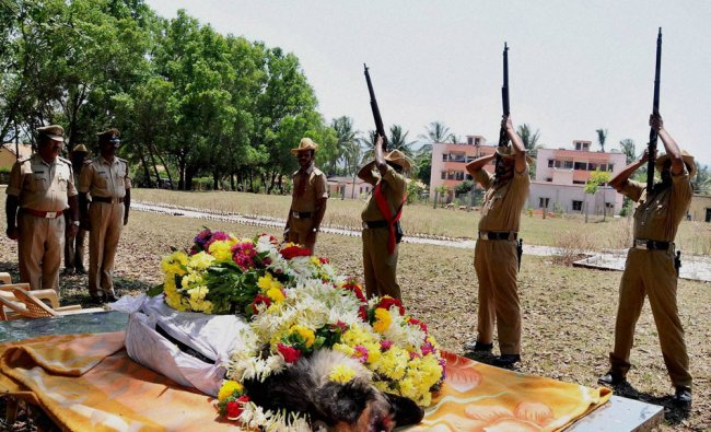 Karnataka police give guard of honour to a 10-year-old German Shepard, a member of the dog squad ...