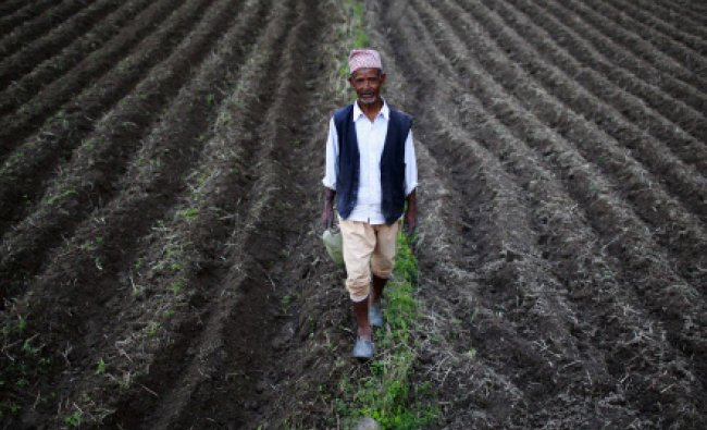 A farmer walks in his field to fill his container with water at Khokana in Lalitpur...