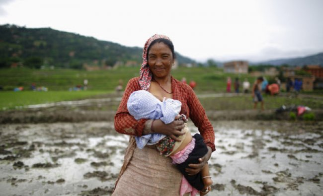 A Nepalese farmer breastfeeds her child before planting rice saplings in a rice paddy field...