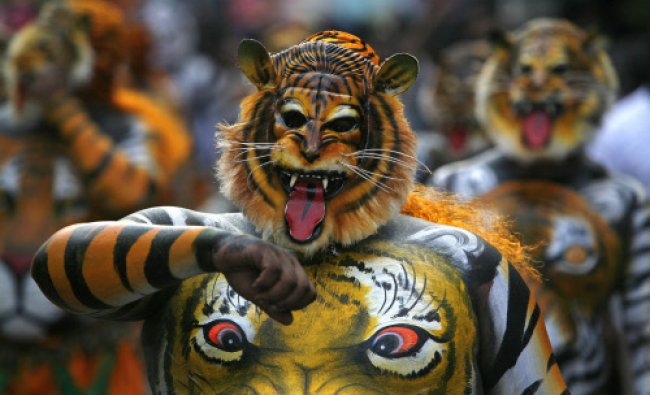An artist performs the annual \'Pulikali\' or Tiger Dance in Thrissur, in the southern Indian...