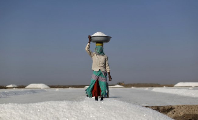A labourer carries salt in a container on a salt pan in Little Rann of Kutch...