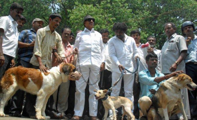 Kannada Chaluvali Vatal Paksha President Vatal Nagaraj and members staging a protest the...