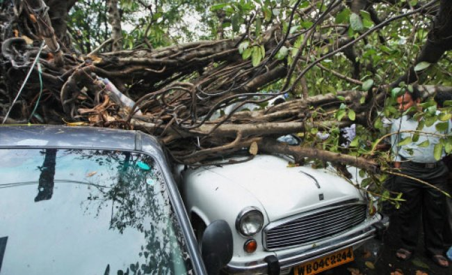 A tree falls down on a car in front of Calcutta High Court during a strom in Kolkata...