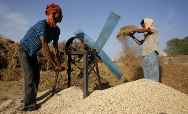 An Indian farmer uses a traditional hand-pushed fan to separate the peas from chaff in Bhaitora...