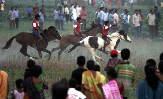 Boys ride horses through a vegetable field during a local horse race in Dakkhin Durgapur...