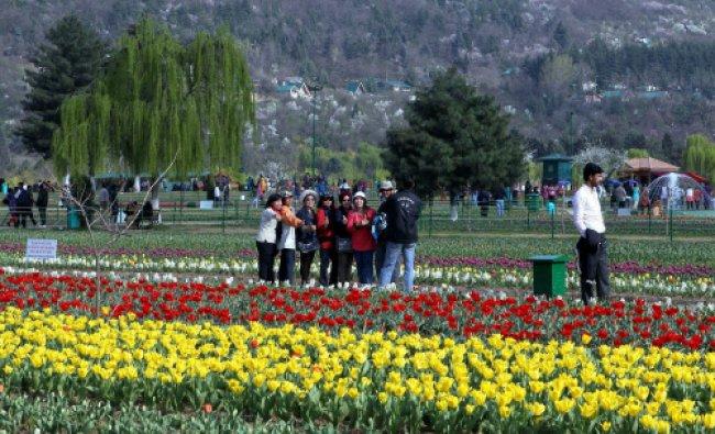 Tourists enjoy Asia\'s largest Tulip garden on the foothills of Zabarwan range overlooking...