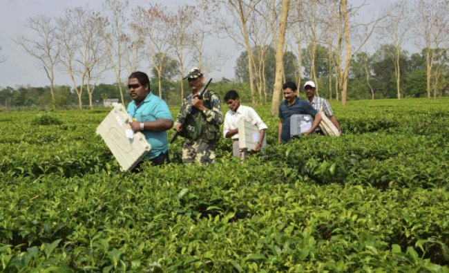 Members of the election staff carry electronic voting machines (EVM) through a tea garden...