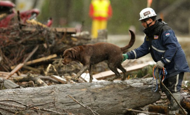 A search worker uses a dog to help look through a pile of debris, Wednesday, April 16, 2014, at...