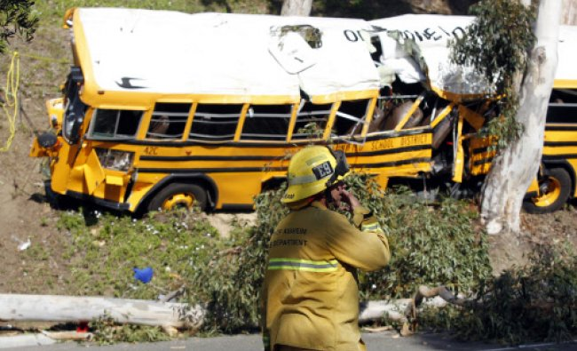 A fire-fighter walks past a school bus leaning against a eucalyptus tree after it veered off the...