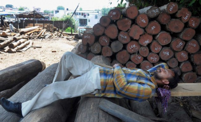 Dehradun : A labourer rests at a wood market on a hot day in Dehradun...