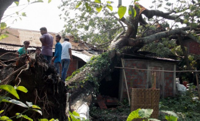 People watch a tree uprooted after a storm at Ananda Bazar Baksa district, Assam...