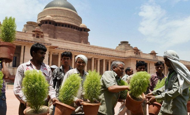 Workers prepare for the swearing-in ceremony of the new government at Rashtrapathi Bhawan ...