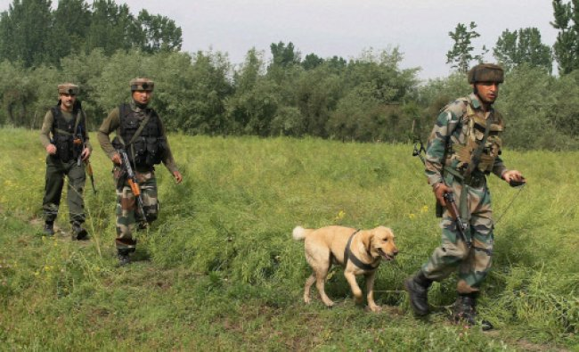 Army personnel use a sniffer dog to carry search operation in Tral area of J&K...