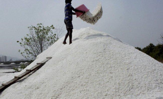 A worker cultivating salt at Mulund-Airoli creek in Navi Mumbai on Monday...