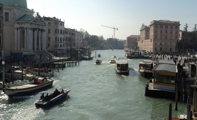 Glimpses of the Venice festival