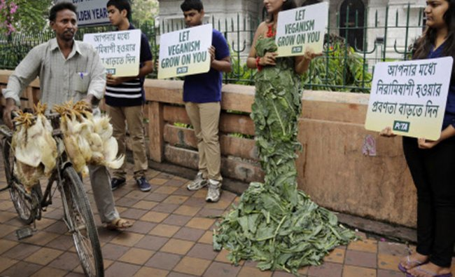 A chicken vendor with his birds walks past People for the Ethical Treatment of Animals (PETA)...