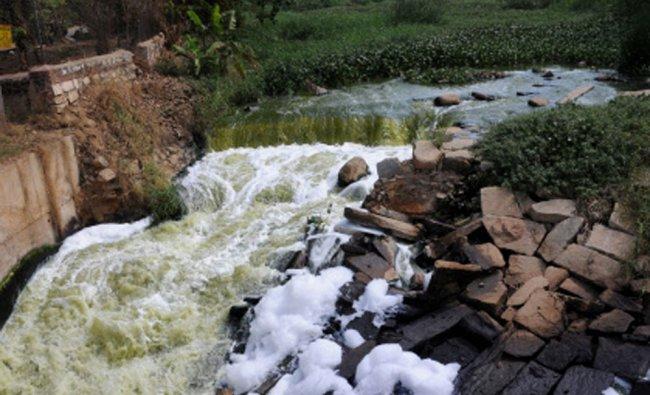 The presence of chemical foam in a lake around Belanduru, Bangalore...