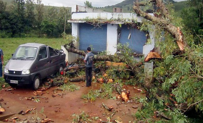 A man looks at a car damaged by uprooted tree at Patangi in Koraput district...
