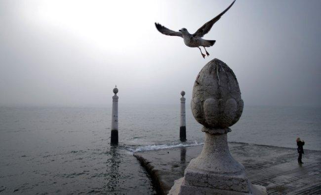 A seagull flies as a woman takes photographs at the Cais das Colunas dock by the Tagus riverbank...