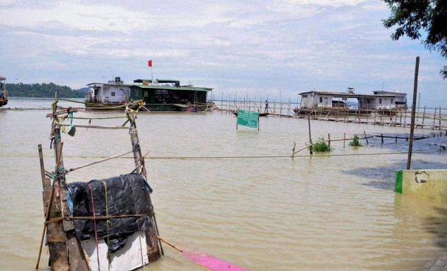 Brahmaputra River flows above the danger level...