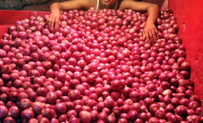 A vendor sorting onions at a storehouse of a wholesale market...