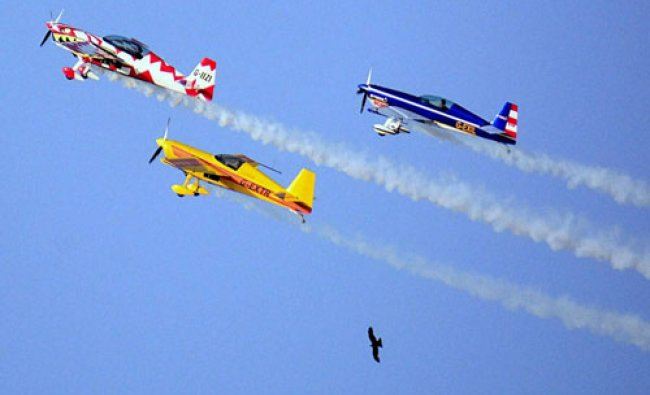Aircrafts of the British aerobatics team Global Stars fly past birds during the rehershal of an ...