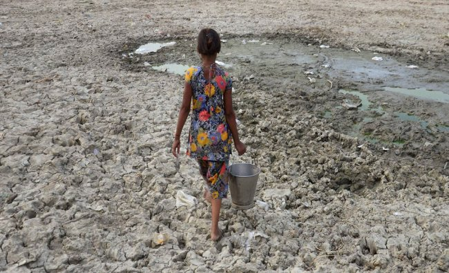 A girl arrives to collect water from an almost dried pond at a village near Allahabad...